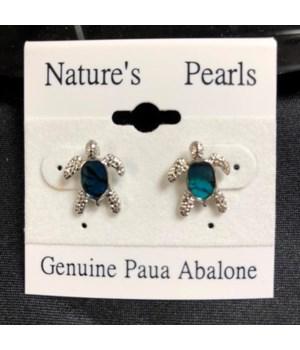 PAUA - TURTLE POST EARRINGS