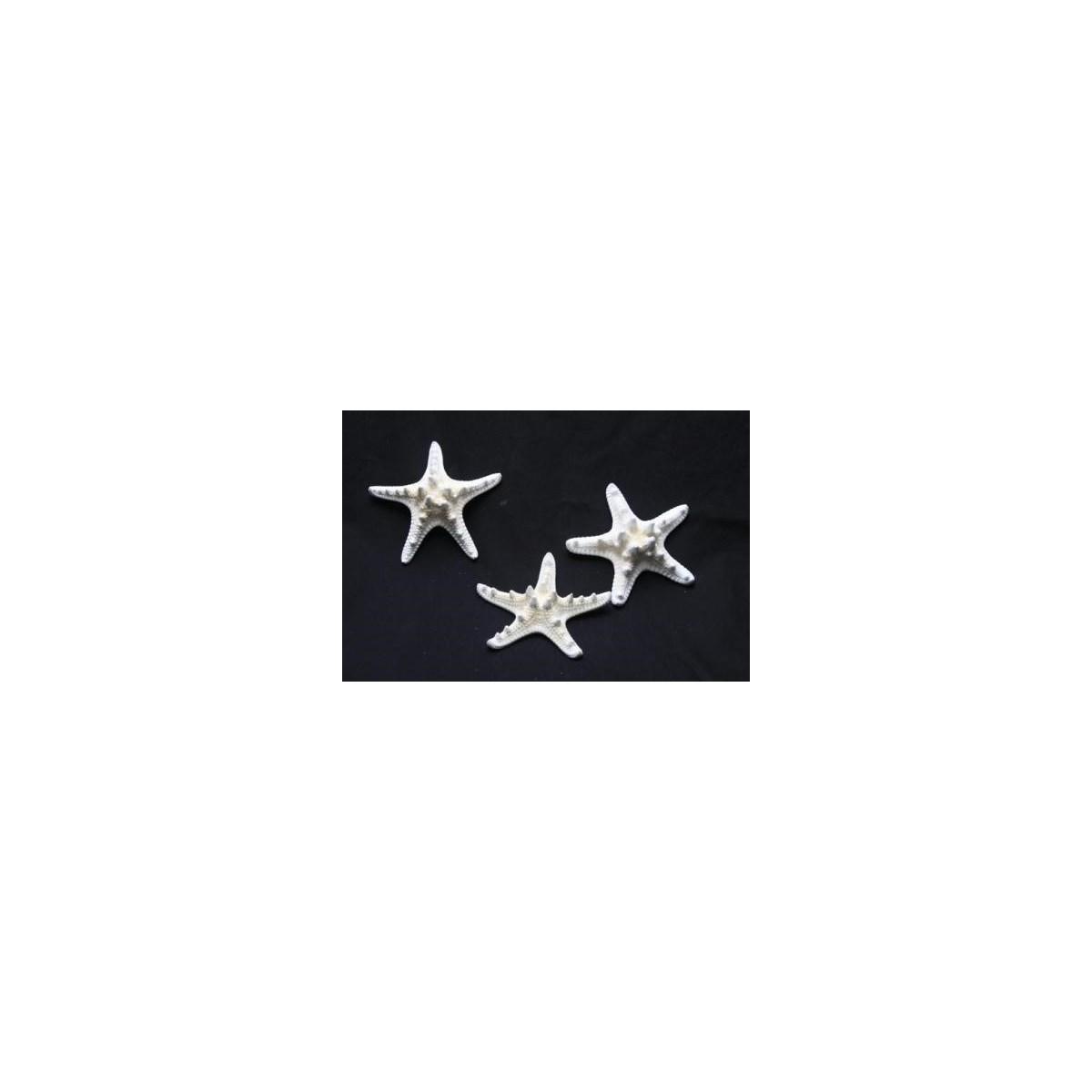 "1-2"" KNOBBY STAR"