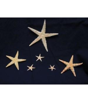 "ORIENTAL STAR 4"""