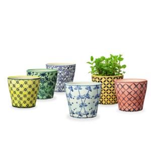 Pretty Pot Varietals, Set of 6