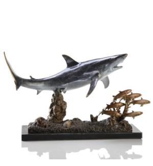 Shark with Prey