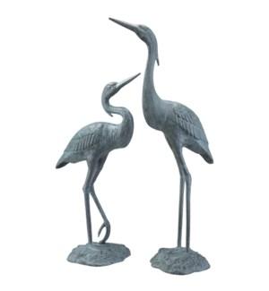 Garden Heron Pair