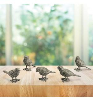 Boardwalk Bird Buddies