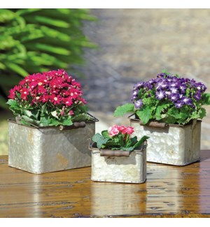 Rustic Square Planters with Handles Set of 3