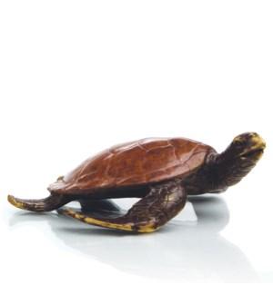 Alex the Turtle