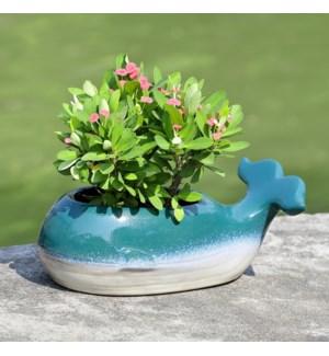 Whale Ceramic Planter