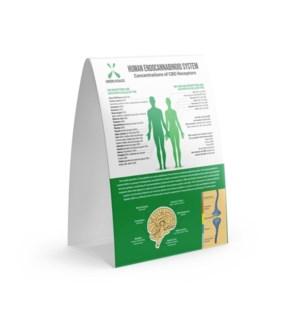 Endocannabinoid Table Tent