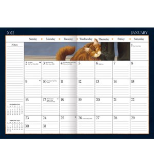 AMERICAN CAT™ 2022 MONTHLY PLANNER