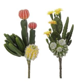 *SB* 13 Cactus Pick