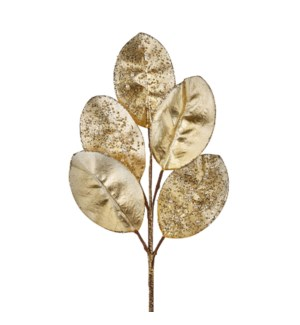 "18"" Champagne Magnolia Leaf Pick"