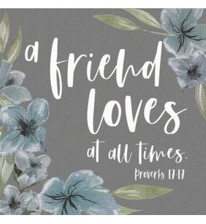 A FRIEND LOVES AT ALL TIMES PROVERBS 17:17 - 6X6