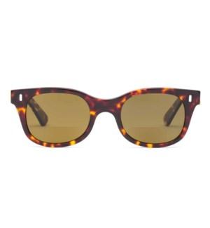 Bixby - Turtle - Sun Reader / 1