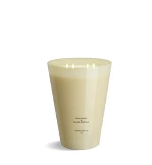 4 wick XXL Candle 3,5 kg/7.7 lb Raspberry & Black Vanilla Ivory