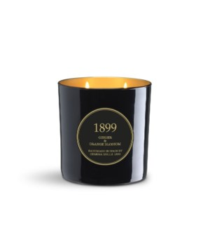 2 wick XL Candle 600 gm/21 oz Ginger & Orange Blossom Black & Gold