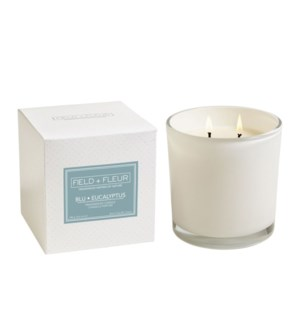 BLU EUCALYPTUS 2 WICK CANDLE IN WHITE GLASS 12oz. TESTER  FREE W/3 CTNS. OR MORE  CTN. 1