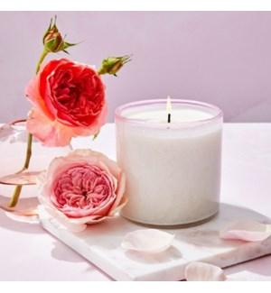 15.5oz Blush Rose Signature Candle - Sunroom