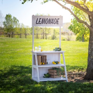 WD. LEMONADE STAND (1/cs) (Available Feb 2019)
