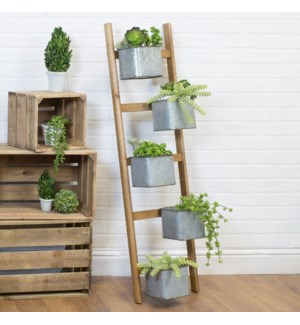 |WD. LADDER PLANTER|