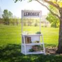 WD. LEMONADE STAND (1/cs) (Available Feb 2019)