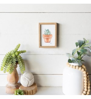 WD. FRAMED SUCCULENT ART