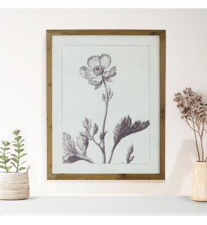 WD. FRAMED FLORAL PRINT W/ GLASS