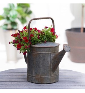 MTL. DECORATIVE WATERING CAN