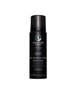 AWG 70ml Dry Shampoo Foam 2.0oz PM
