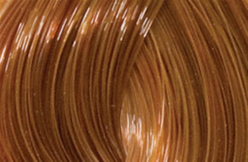 90ml 7CG(7/43)Drk Copper Gold Blon LNZ
