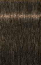 NEW 6-63 Dark Blonde Chocolate Matt ROYA