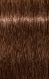 $BF     $ B-6 Brown Chocolate Color HIGH