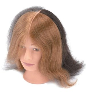 Four Hair Colour Mannequin,  Approximaely 10 Inches
