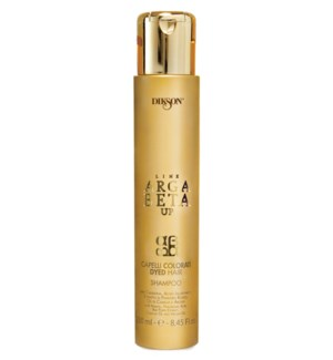 DK ARGABETA UP COLOR SHAMPOO 250ml