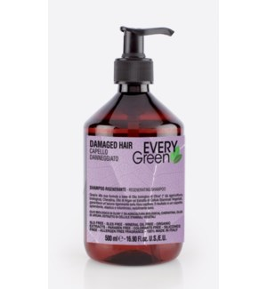 DK EVG DAMAGED HAIR SHAMPOO 500ml