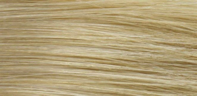 90ml 10N (10/0) Very Light Natural Blonde LNZ