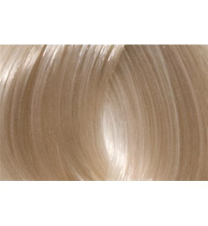 90ml 10A (10/1) Very LightAsh Blonde LNZ
