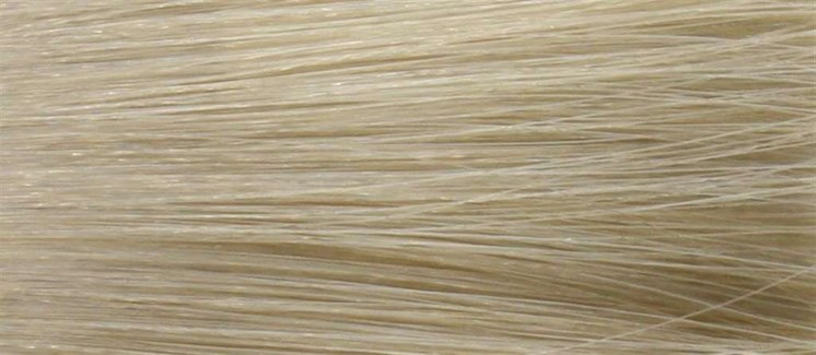 90ml 9B (9/2) Light Beige Blonde LNZ