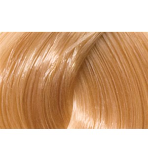 90ml 9G (9/3) Light Golden Blonde LNZ
