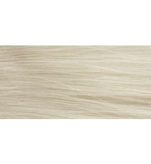 90ml 100A (100/1) Ultra Light Ash Blonde LNZ