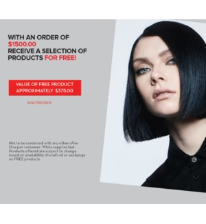 ! Special Free good offer FREE GOODS VALUE $316- with the purchase of $1500.00 MA2021 ONE PER SALON