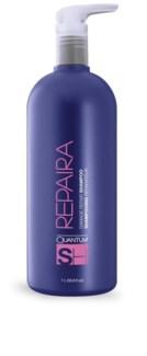 NEW LTR Damage REPAIRA Shampoo