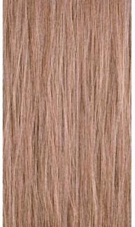 90ml 10WB Lightest Warm Blonde  PM 3oz