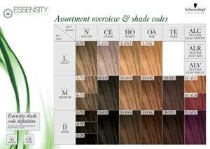 * NEW Essensity Color Wall Chart