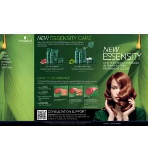 NEW Essensity Sales Folder