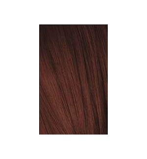 4-88 Medium Brown Red Extra Igora Royal