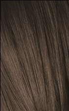 6-1 C5 Dark Blonde Cendre Igora Royal