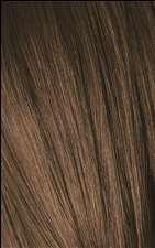 6-4 Dark Blonde Beige Igora Royal