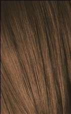 6-5 G5 Dark Blonde Gold Igora Royal