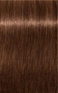 *BF     * B-6 Brown Chocolate Color High Power Igora Royal
