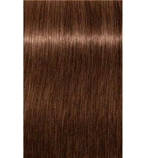 B-6 Brown Chocolate Color High Power Igora Royal