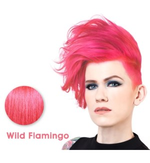 *SPARKS WILD FLAMINGO LL HAIR COLOR